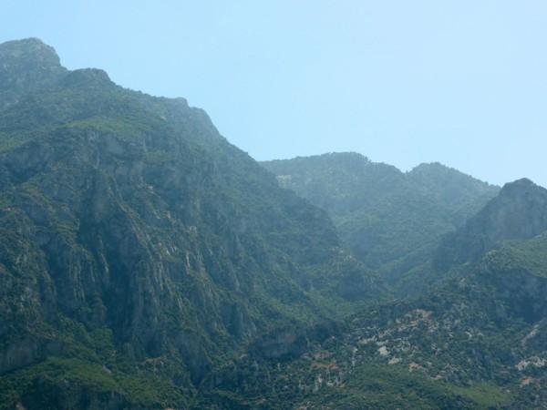 2a Mt Syphillus II