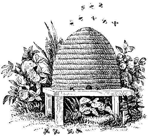 The Bee Part 3 Beegotten Andrew Gough