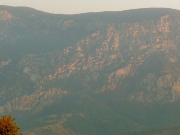 2 Mt Syphilus