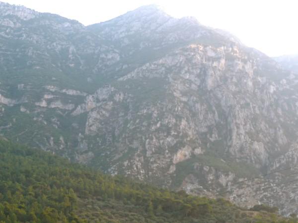 2b Mt Syphillus